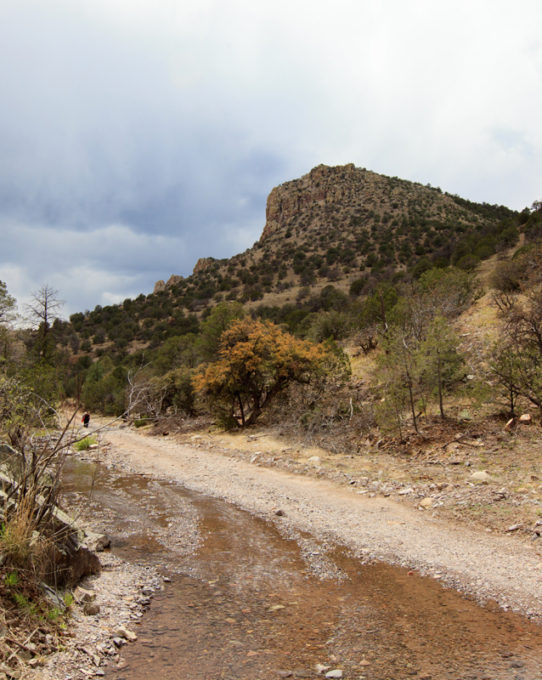 The Gila Wilderness