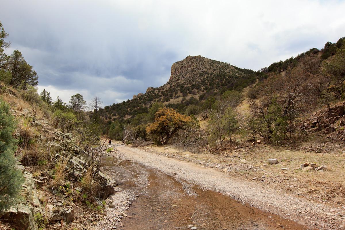 The Gila Wilderness